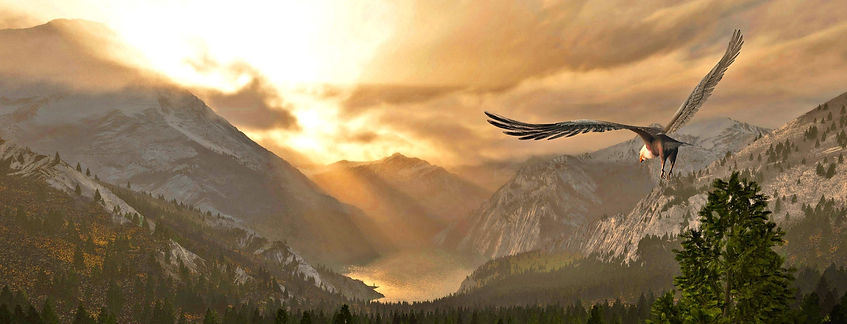 flying_bird_1_edited_edited.jpg