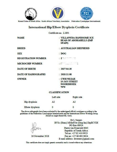 HD ED certificate.jpg