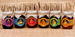 Geleias de frutas Amazônicas