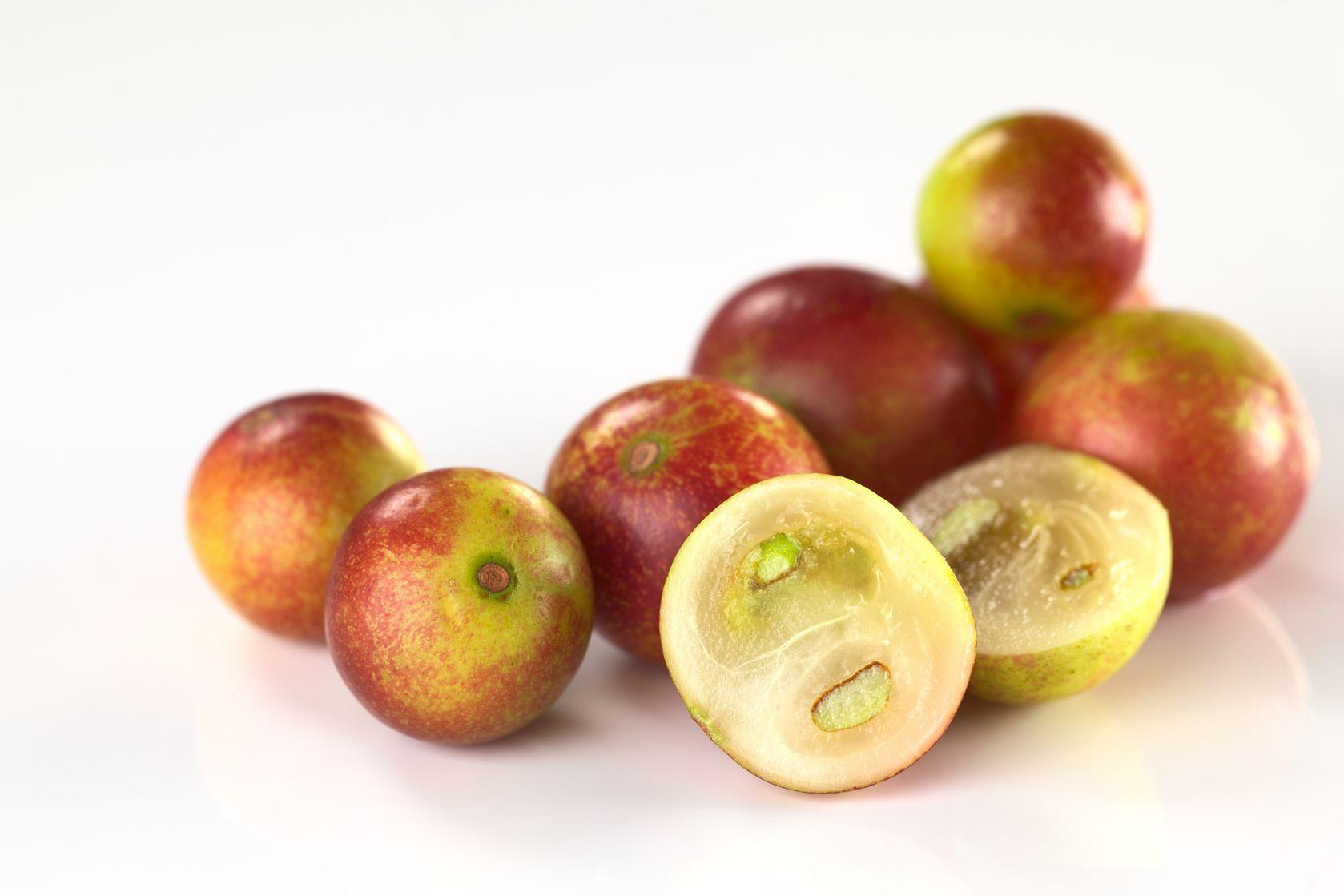 Camu camu (Myrciaria dubia)