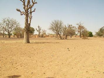 sécheresse Afrique Puits