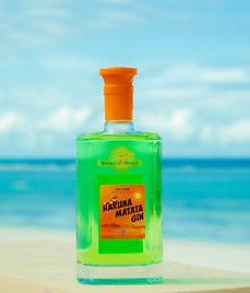 Green Hakuna Matata gin on the beach.