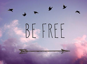 arrow-be-free-birds-brave-Favim.com-3380