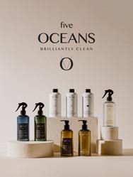 five_oceans_webb_gallery.jpg