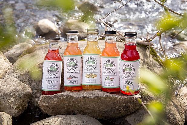 Escarpment Kombucha bottles.jpg