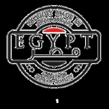 صنع في مصر 2_edited.png