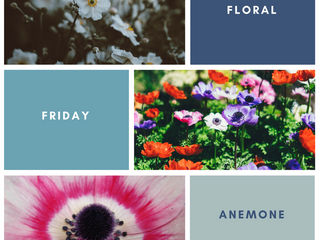 Floral Friday: Anemone