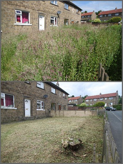 Garden 2 Before and After.jpg
