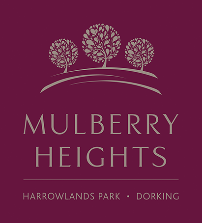 mulberry_logopng