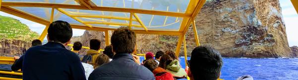 Saída para observação de Cetáceos