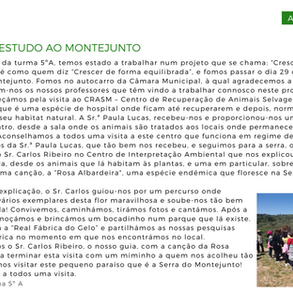Artigo na Revista Voz do Estudante