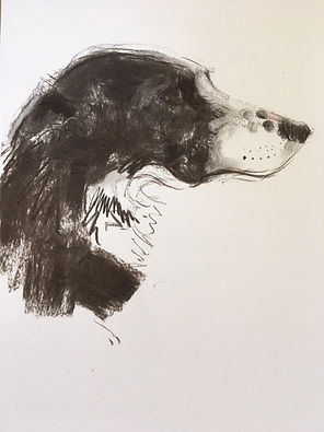 Sally Muir On The Spot Dog Drawing