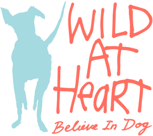 Wild At Heart Foundaton