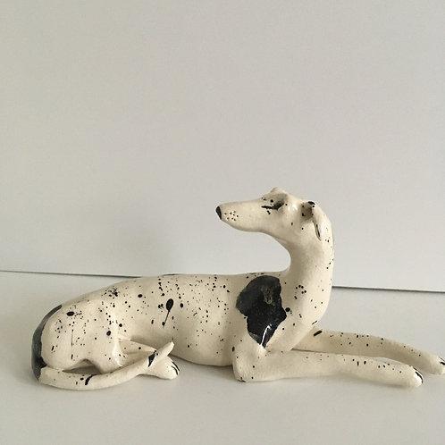 Little White and Black Dog