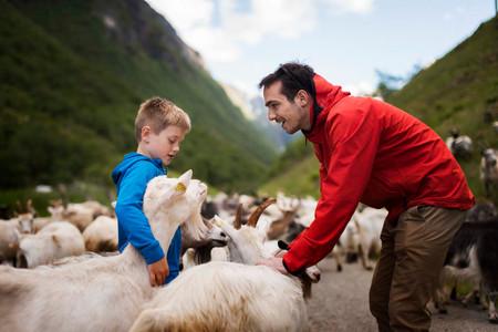 Flåm Guideservice. Heritage Taste FjordSafari.