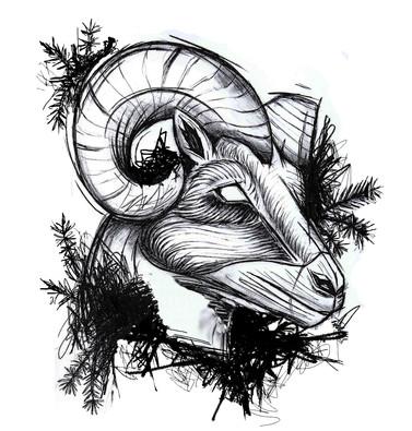 Aries/ Zodiac