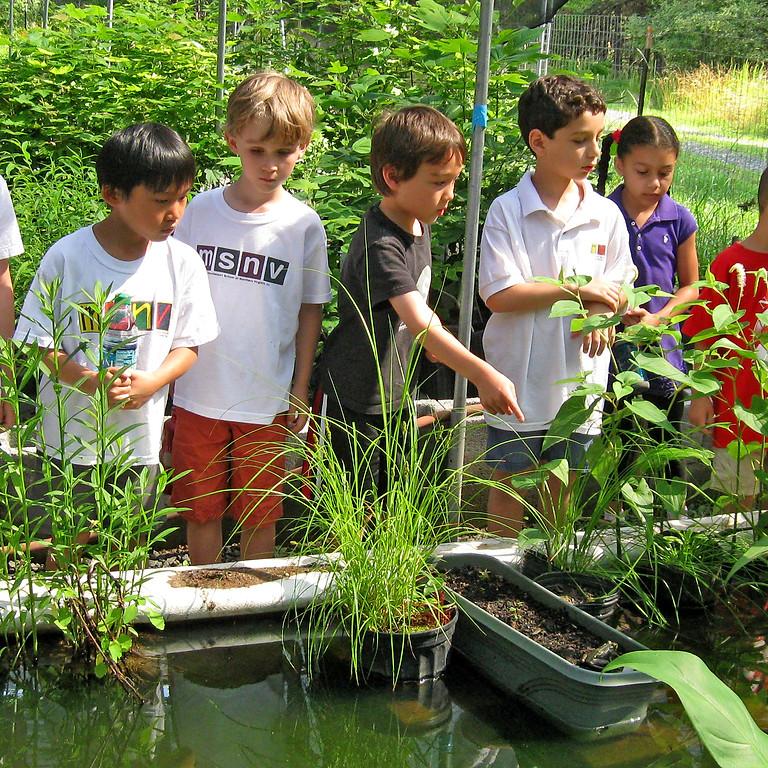 In-School Native Plant Propagation