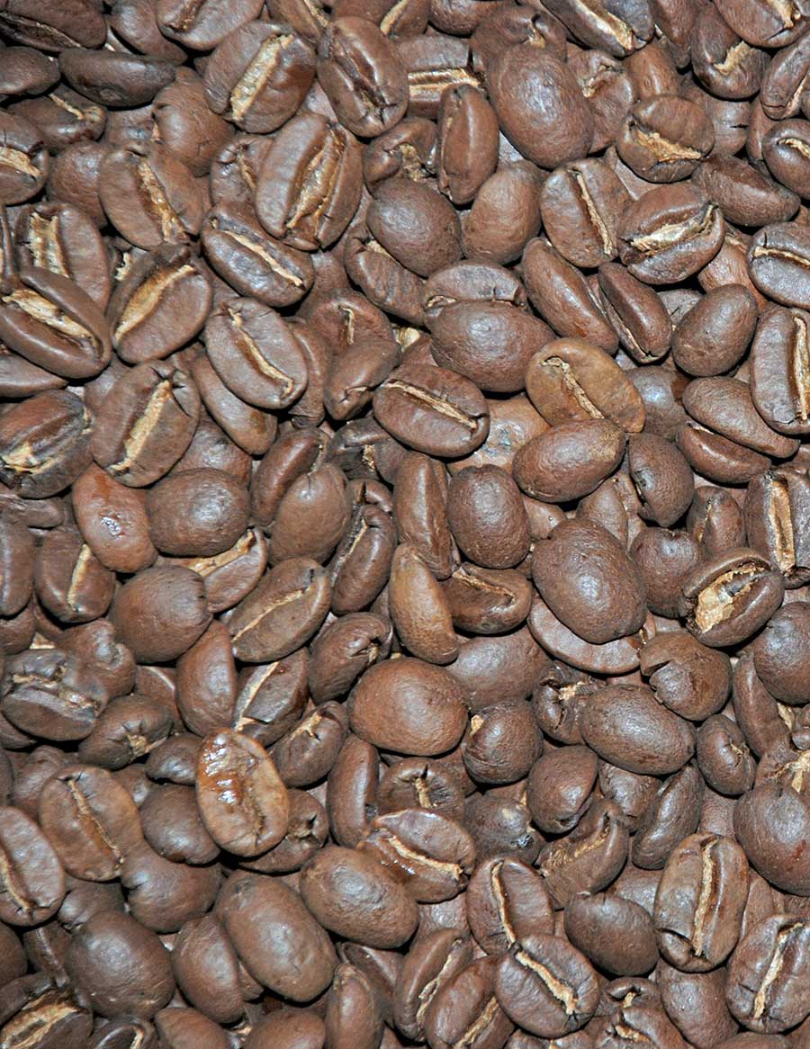 Rising Forests® Coffee