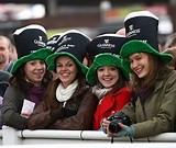 Guinness & Cheltenham - a match made in Heaven