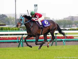 Where else can I go Jump racing around the world? Part III - Japan