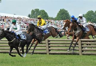 Where else can I go Jump racing around the world? Part II - the Americas