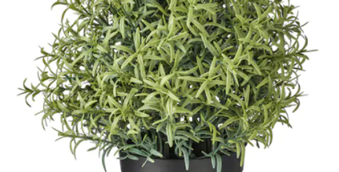 """Artificial potted plant, Rosemary3 ½ """" (9 cm)"""