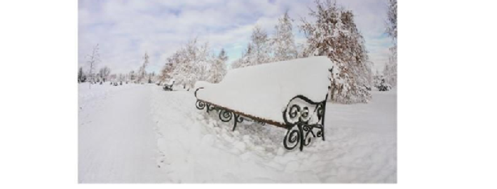 Picture - Winter Scene with Bench