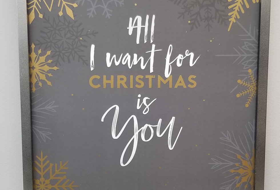 Picture -  All I want for Christmas is You - 16x16