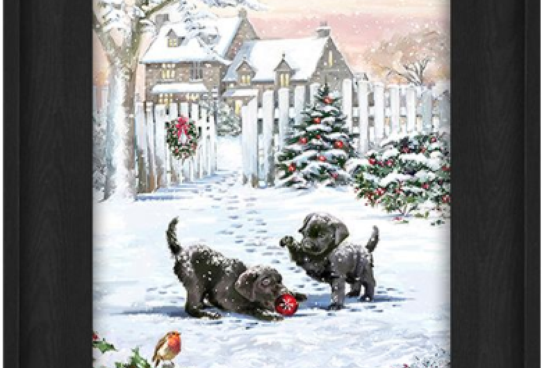 "Picture - 2 Black Puppies playing outside - 6"" x 8""  (227275)"