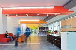 rainbow coloured reception and circulation corridor in the Roslin Institute