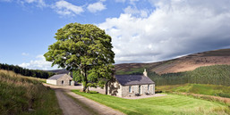 holiday cottage set in green scottish countryside