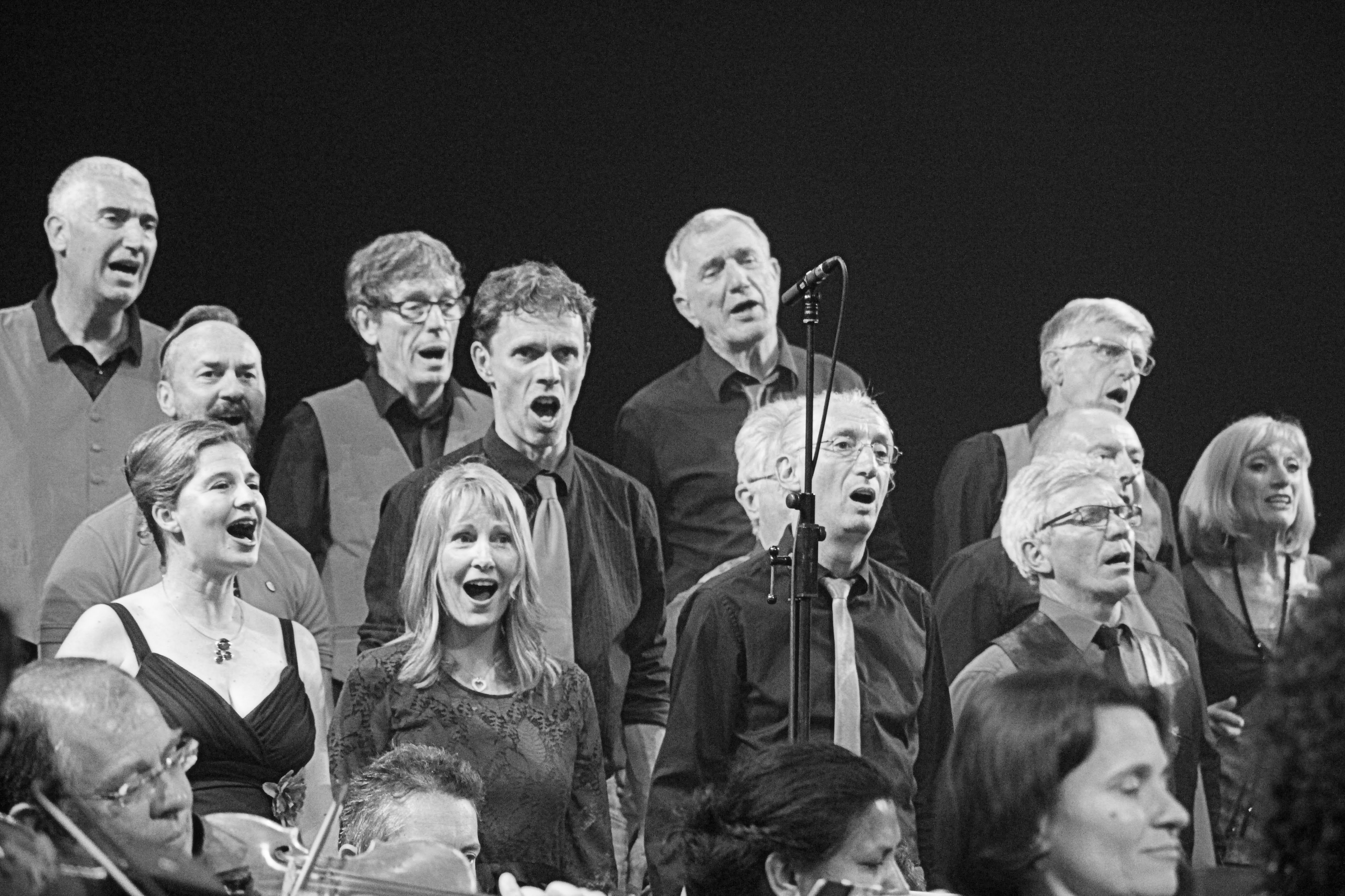 grenoble, groupe, vocal, choral