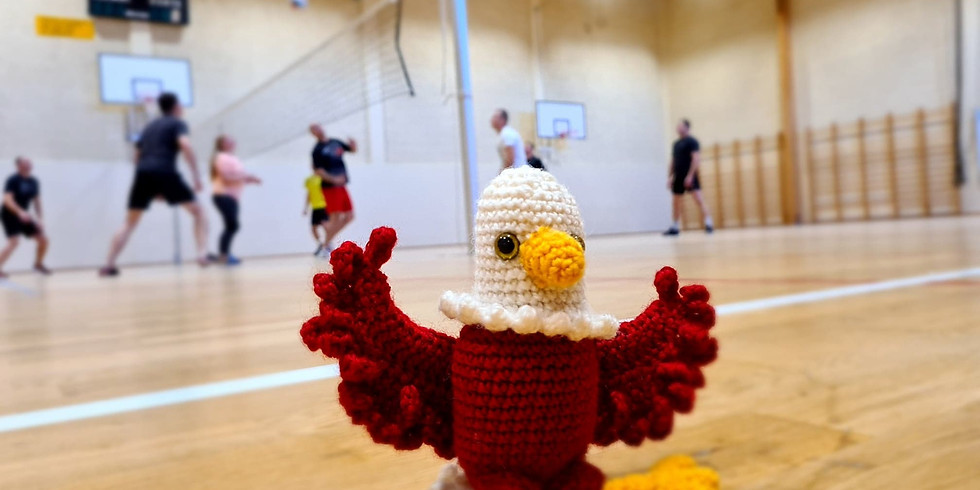 NordPolen Volleyball 2020