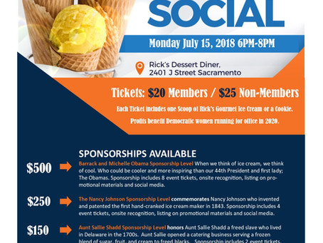 Silent Auction Items to Spice Up Your Life at Women Dem's Ice Cream Social