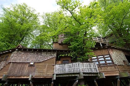 treehouse-2021033_1920.jpg