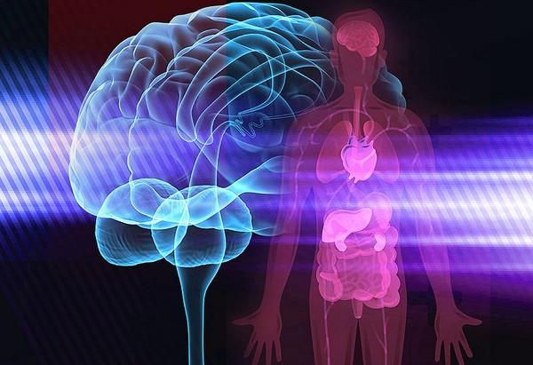 Què és la Psiconeuroimmunoendocrinologia (PNIE)?