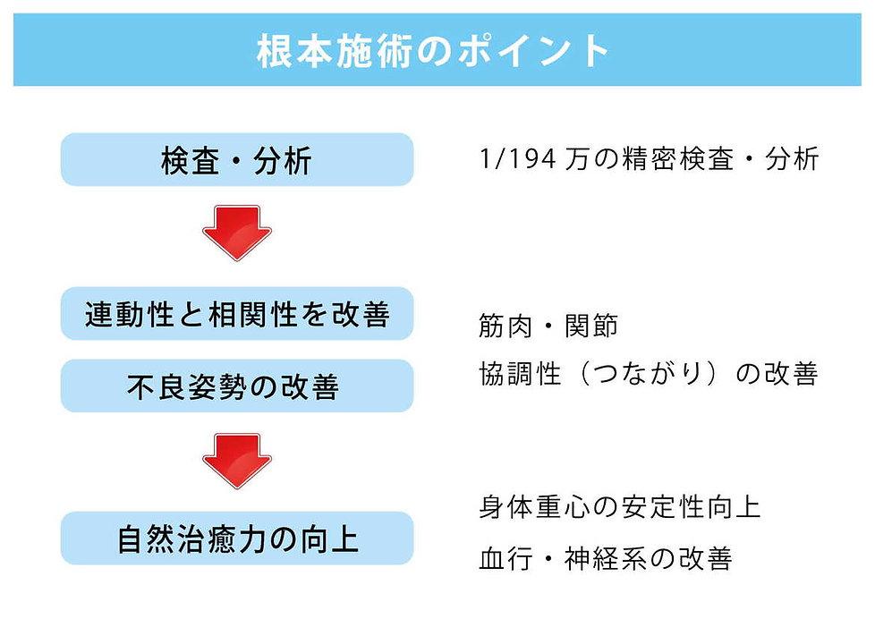 1-3.イーファス施術の紹介資料 横-4.jpg