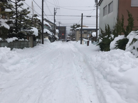 記録的大雪のため、来院を控えていただいてます