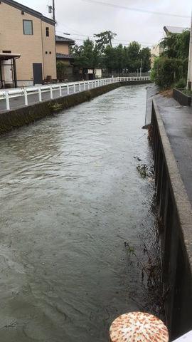 整骨院そばの川の状況です。