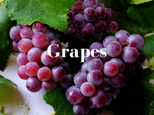 Food in Chinese Medicine: Grapes
