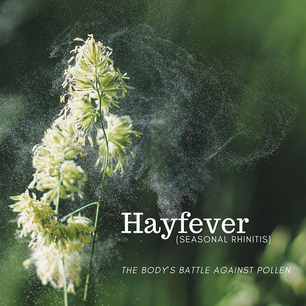 Sen Health - Blog - Hayfever