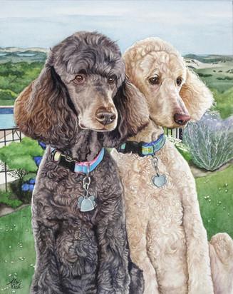 Teddy and Ollie
