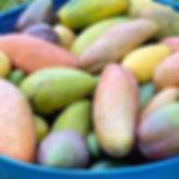 Basket_Fruit_Vegetables_2.jpg