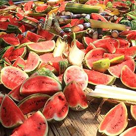 Watermelons5.jpg