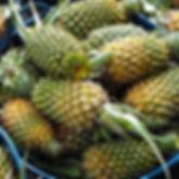 Basket_Fruit_Vegetables.jpg