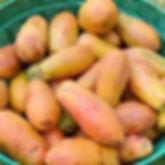 Basket_Fruit_Vegetables_5.jpg