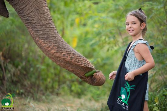 Samui_Elephant_Sanctuary_44.jpg