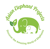 Asian_Elephant_Projects.png
