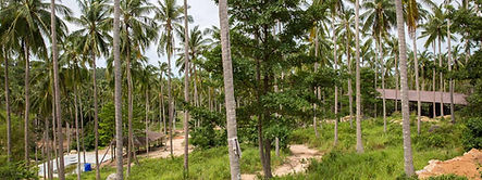 SES_Chaweng_Noi_View_2.jpg