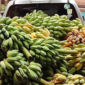 Pickup_Truck_Bananas.jpg
